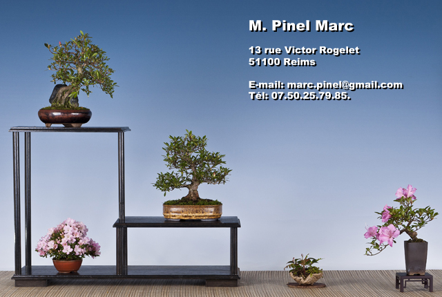 Informations - Marc Pinel
